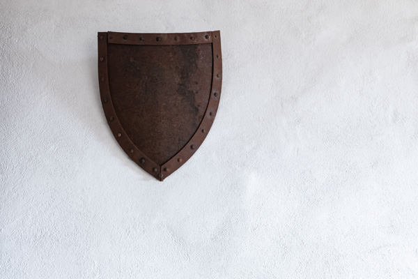 shield, wall, wounds, scars, war, badge, honor, motherhood, seasons, armor
